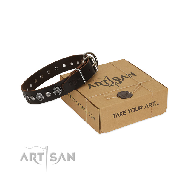 Strong full grain leather dog collar with stylish adornments