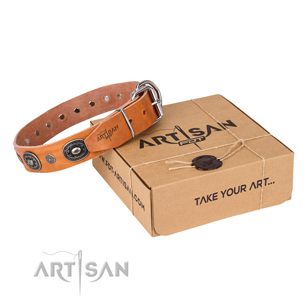 Top rate full grain genuine leather dog collar crafted for fancy walking