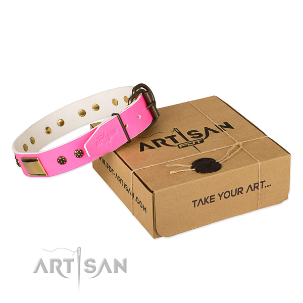 Stylish leather collar for your attractive pet