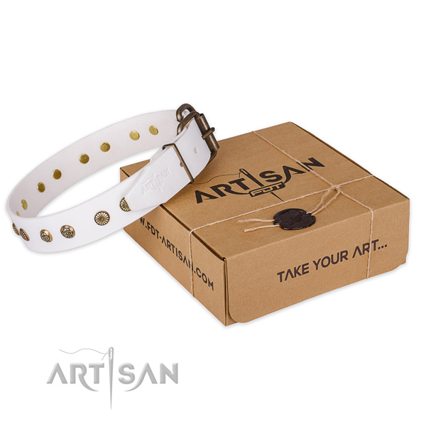Rust resistant traditional buckle on full grain genuine leather collar for your handsome canine
