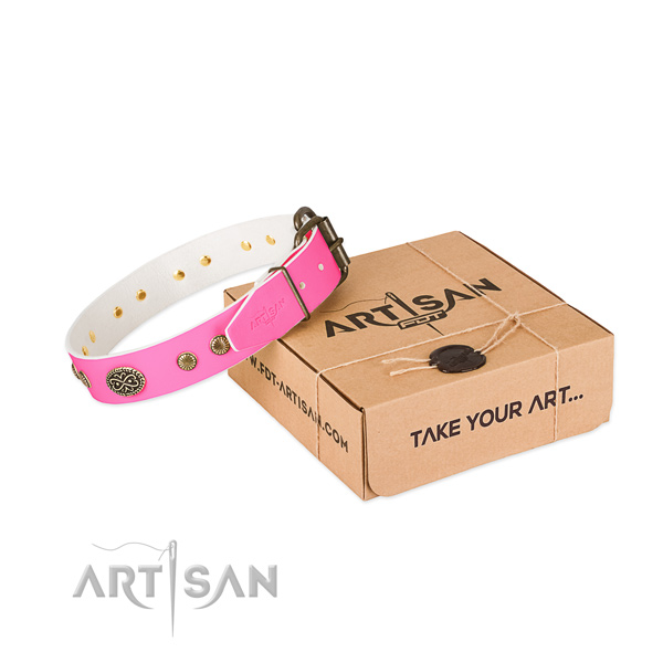 Strong traditional buckle on leather dog collar for your dog