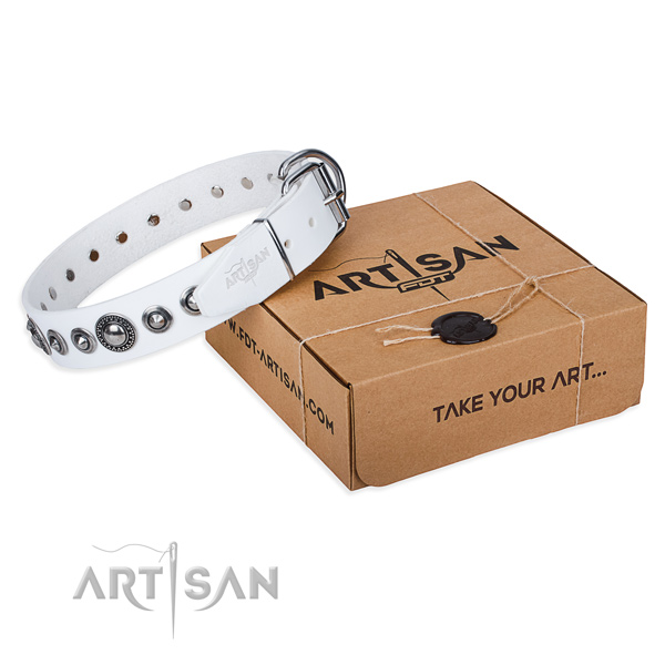 Full grain natural leather dog collar made of top rate material with reliable traditional buckle