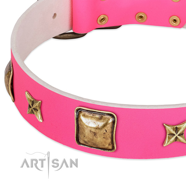 Natural leather dog collar with unusual decorations