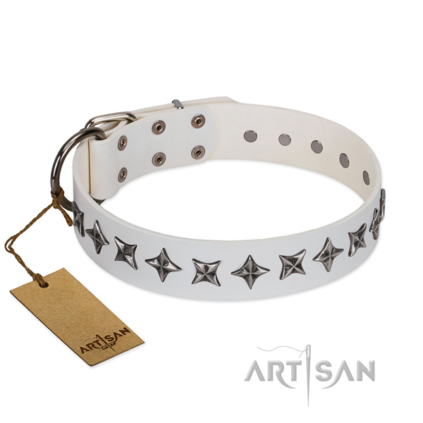 Comfortable wearing dog collar of quality full grain natural leather with studs