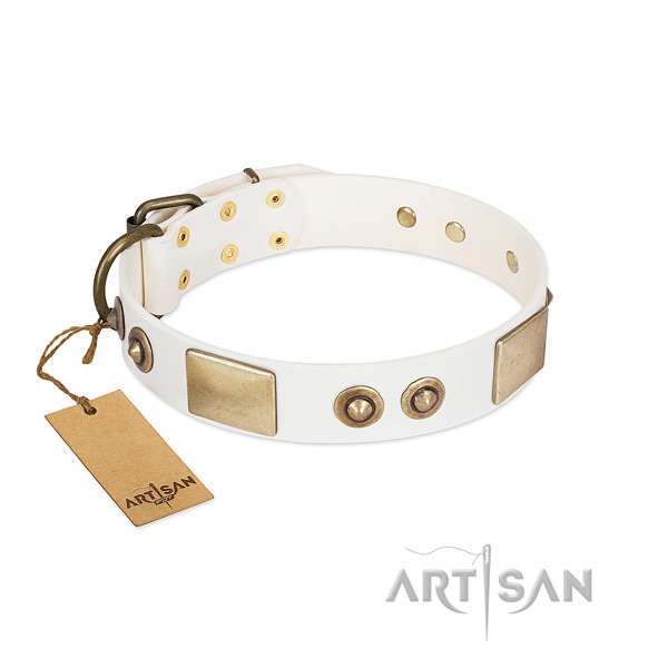 Strong adornments on natural genuine leather dog collar for your four-legged friend