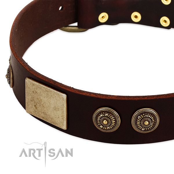 Rust resistant fittings on full grain leather dog collar for your pet