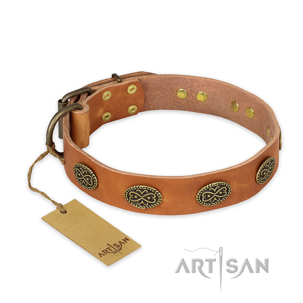 Designer full grain leather dog collar with corrosion resistant fittings