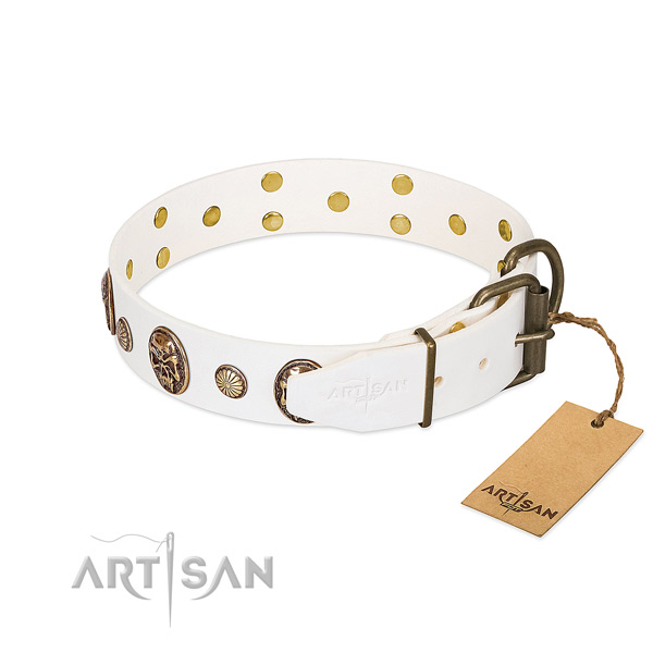 Rust resistant D-ring on genuine leather collar for everyday walking your four-legged friend