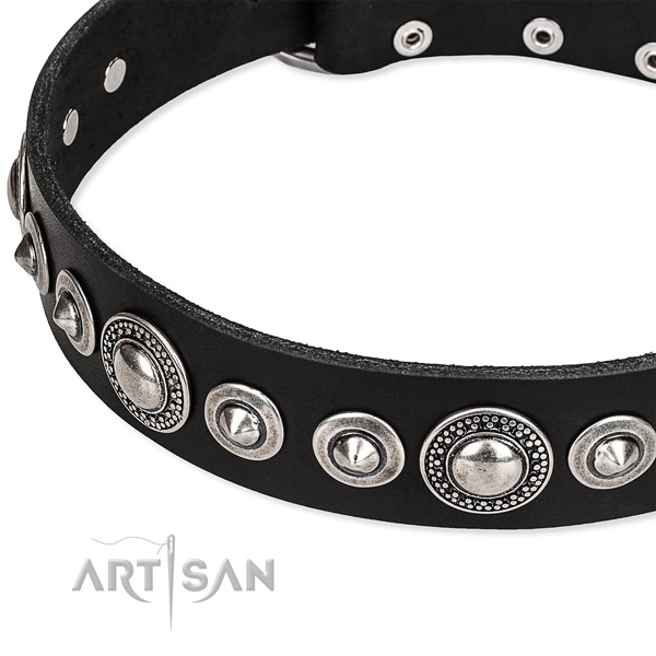 Everyday use adorned dog collar of quality full grain leather