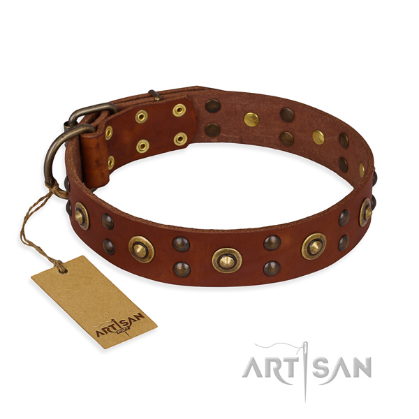 Inimitable genuine leather dog collar with reliable hardware