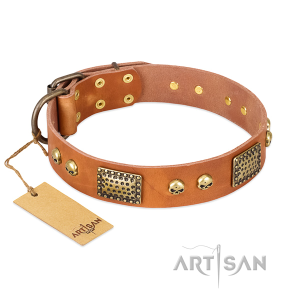Adjustable leather dog collar for walking your canine