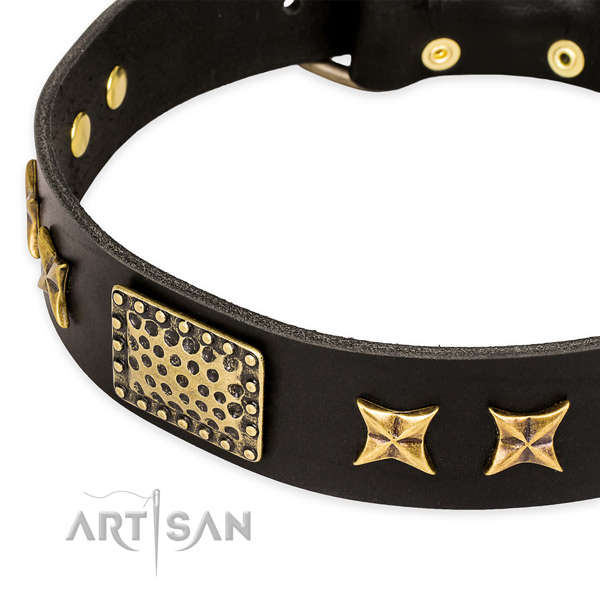 Full grain leather collar with strong buckle for your attractive canine