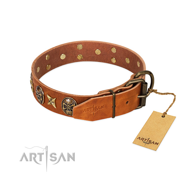 Leather dog collar with reliable traditional buckle and embellishments