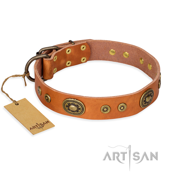 Natural genuine leather dog collar made of soft to touch material with corrosion proof traditional buckle