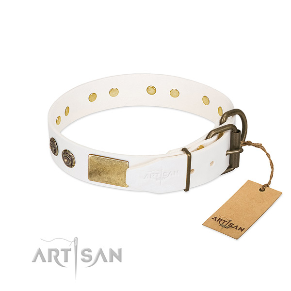 Corrosion resistant traditional buckle on full grain genuine leather collar for stylish walking your four-legged friend