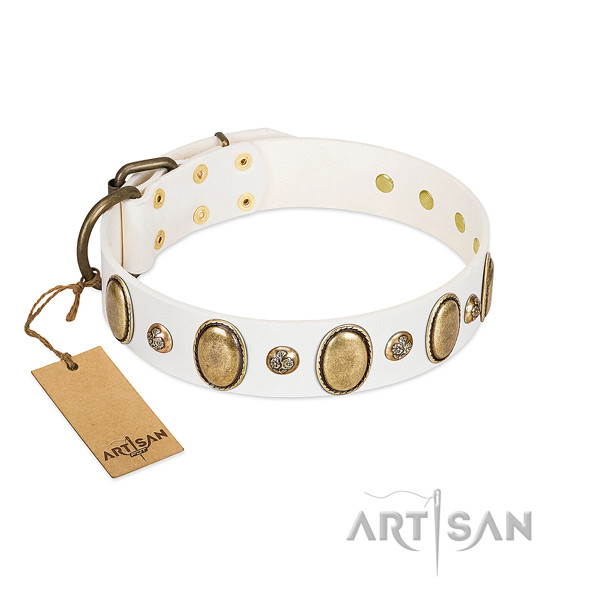 Full grain genuine leather dog collar of high quality material with remarkable studs
