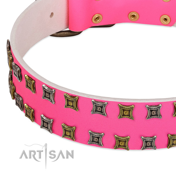 Full grain genuine leather dog collar with studs for your stylish pet