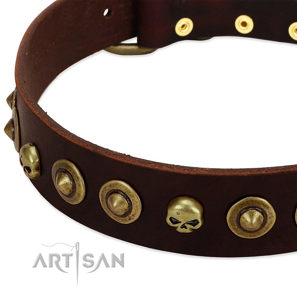 Exquisite embellishments on full grain genuine leather collar for your doggie