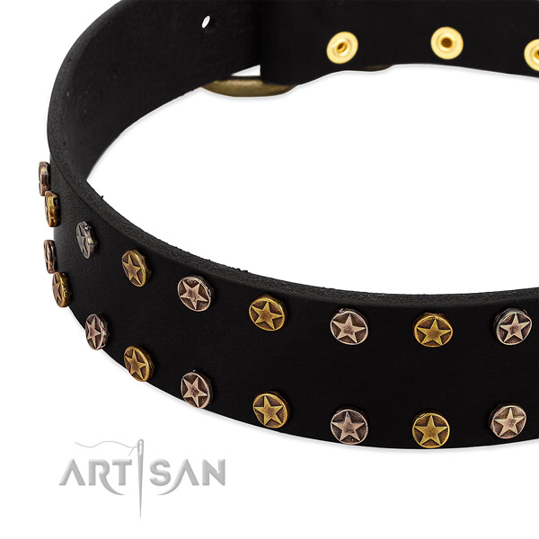 Significant embellishments on natural leather collar for your dog