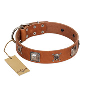 """Amorous Escapade"" Embellished FDT Artisan Tan Leather Belgian Malinois Collar with Chrome Plated Crossbones and Plates"