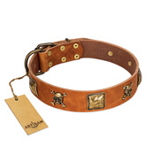 """Knights Templar"" FDT Artisan Tan Leather Belgian Malinois Collar with Skulls and Crossbones Combined with Squares"
