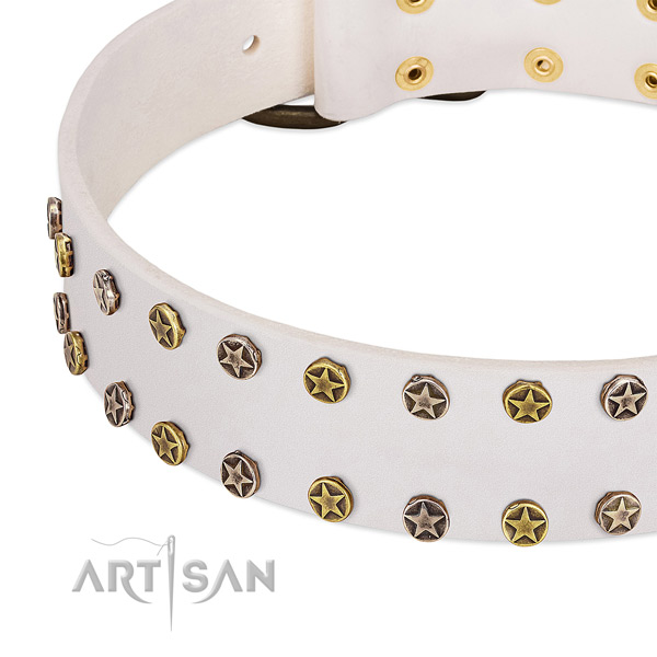 Extraordinary adornments on genuine leather collar for your canine