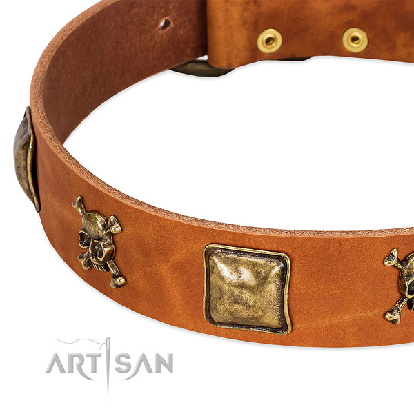 Top notch adornments on full grain natural leather collar for your doggie