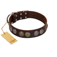 """Treasure Hunter"" FDT Artisan Brown Leather Belgian Malinois Collar with Old-Bronze-like and Silvery Medallions"