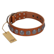 """Velvet Kiss"" Handmade FDT Artisan Tan Leather Belgian Malinois Collar with Vintage Medallions"