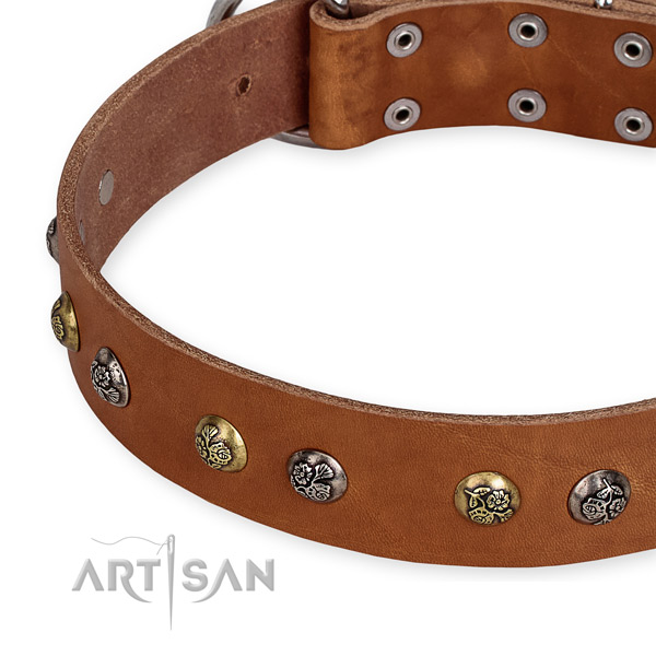 Full grain natural leather dog collar with impressive corrosion resistant embellishments