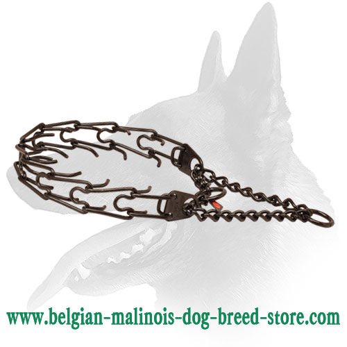 Belgian Malinois Durable Pinch Collar