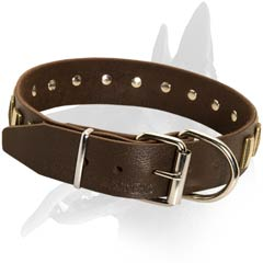 Belgian Malinois Leather Dog Collar with plates