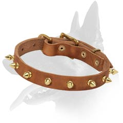 Fancy Malinois Leather Dog Collar