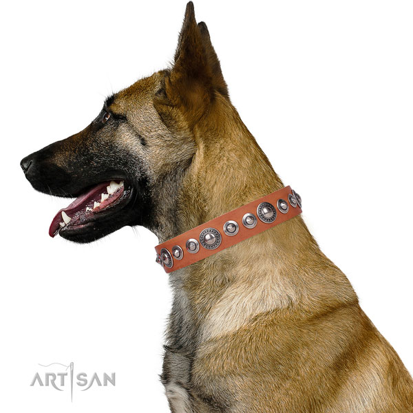 Trendy decorated genuine leather dog collar for easy wearing