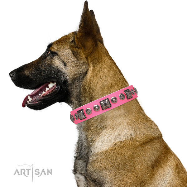 Exquisite adorned natural leather dog collar