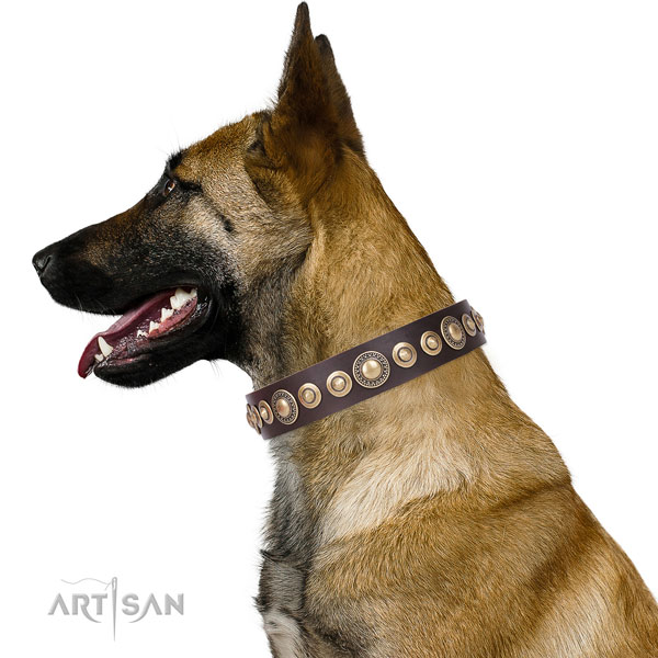 Designer embellished natural leather dog collar