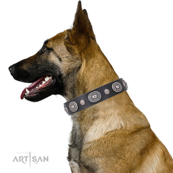 Strong buckle and D-ring on leather dog collar for everyday walking