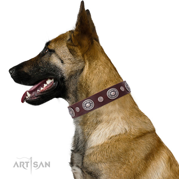 Rust-proof buckle and D-ring on natural leather dog collar for daily use