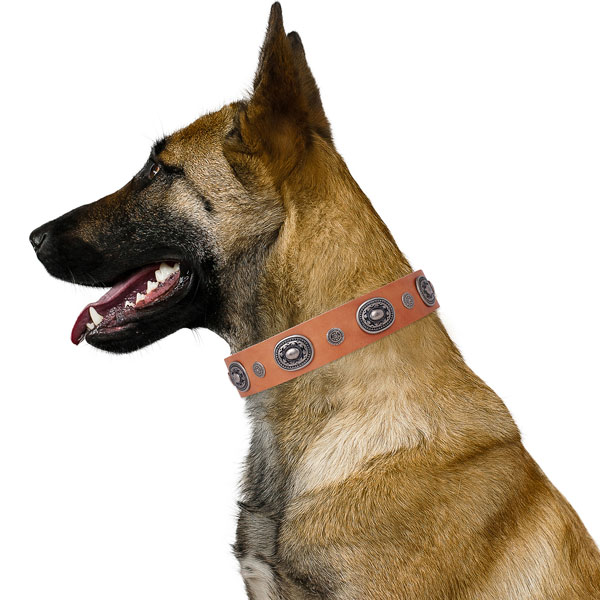 Leather dog collar with reliable buckle and D-ring for handy use