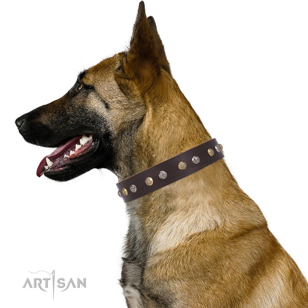 Full grain leather dog collar with corrosion resistant buckle and D-ring for everyday walking