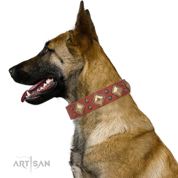 Comfy wearing studded dog collar made of strong natural leather