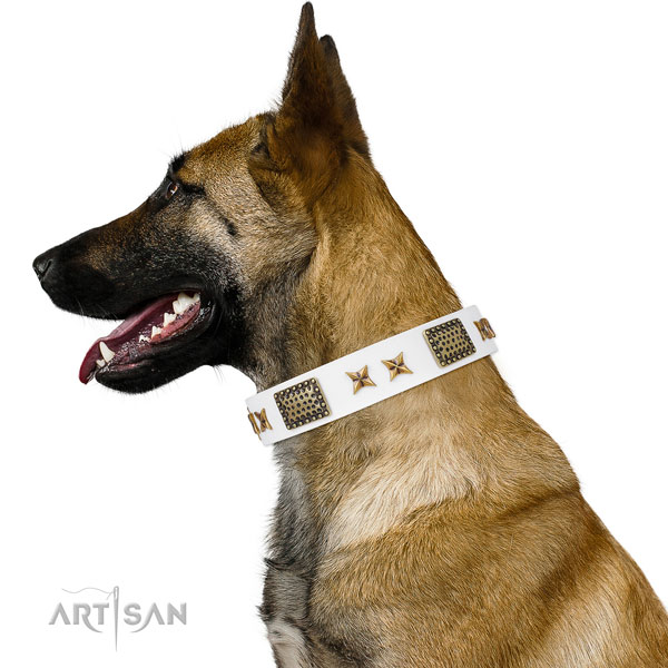 Unique adornments on handy use full grain leather dog collar