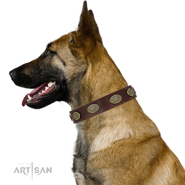 Unusual adornments on easy wearing full grain leather dog collar