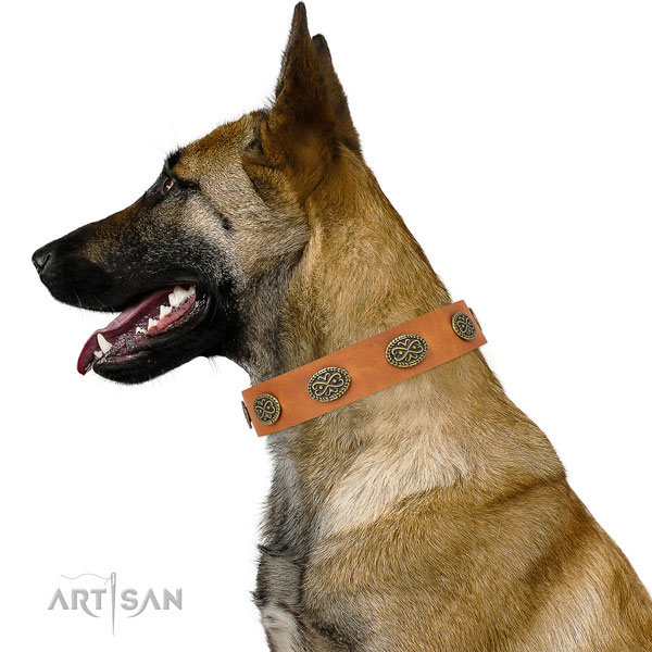 Remarkable adornments on fancy walking genuine leather dog collar