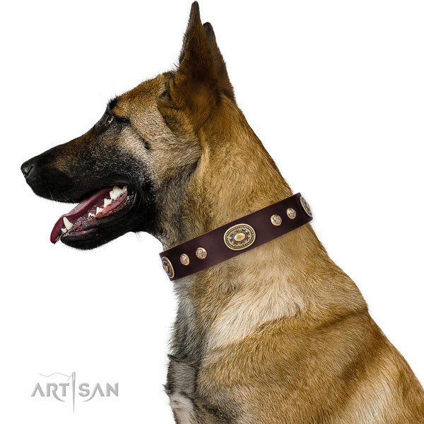 Unique studs on comfortable wearing dog collar