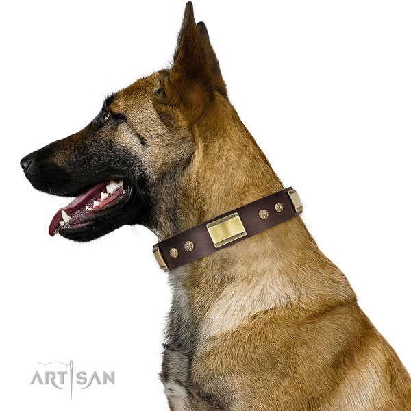 Handy use dog collar of genuine leather with incredible decorations