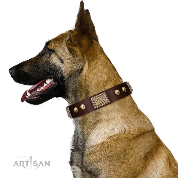 Strong traditional buckle on genuine leather dog collar for everyday use