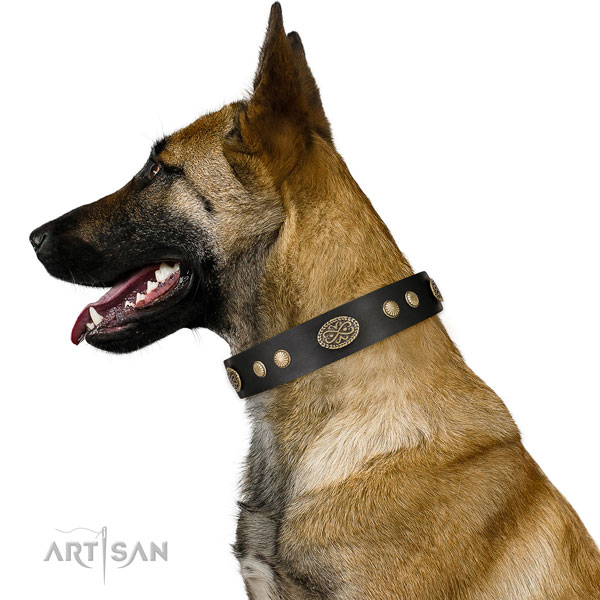 Corrosion proof fittings on full grain natural leather dog collar for easy wearing