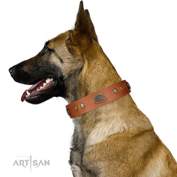 Corrosion proof D-ring on Genuine leather dog collar for fancy walking