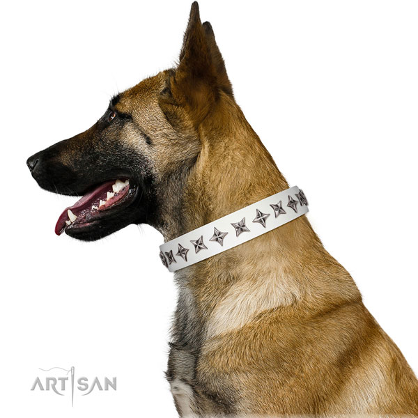 Best quality full grain leather dog collar with top notch decorations